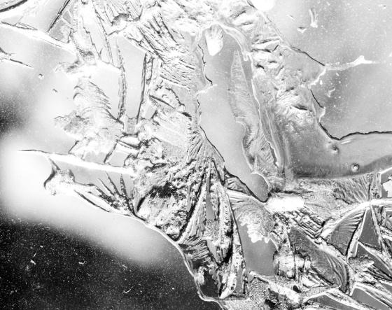 Ice010_B&W_sm