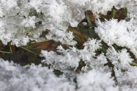 SnowIce015_sm